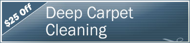 Cleaning Coupons | $25 off deep cleaning | NY'S Carpet Cleaners
