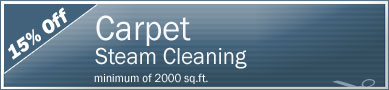 Cleaning Coupons | 15% off carpet steam cleaning | NY'S Carpet Cleaners